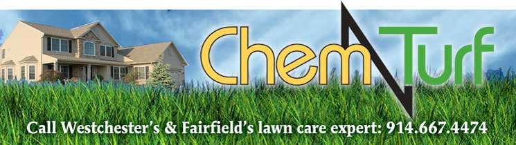 Contact ChemTurf Lawn Service at: 914 667 4474